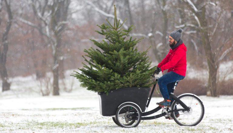 Lastendreirad Dreirad für Erwachsene mit Weihnachtsbaum